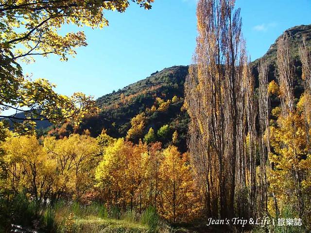 箭河步道上的楓葉超美