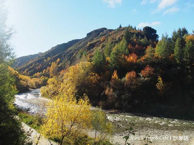 箭河與滿山的樹木