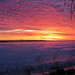 Winter Sunrise - Lever de soleil d'hiver