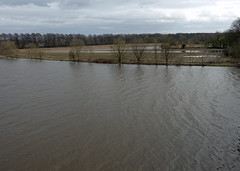 Swolen River Ribble