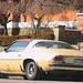 a rusty old Camaro... still runs