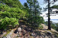 Summit of Mount Norman on South Pender Island in British Columbia, Canada