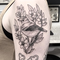 Lil bird for @bodyworkbynikki . .. ... .. . .. #eyeofjadetattoo #eyeofjade #jeremygolden #jeremy_golden #jeremygoldentattoo #blackwork #blackworkerssubmission #darkartists #blacktattoomag #blacktattooart #btattooing #onlyblackart #blacktattoo #blackink #b