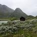 Una casita en el campo