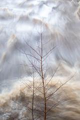 Photo of Flood