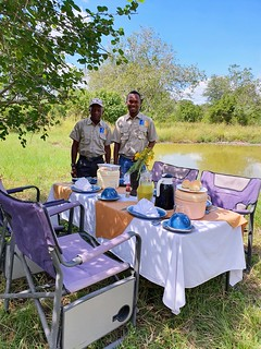 Safari | Africa Safari Selous