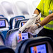 Delta Aircraft Cleaning