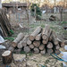 Firewood stacked in a woodpile for home heating