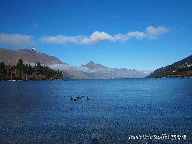 野鴨們悠遊地在卡蒂普湖Lake Wakatipu戲水