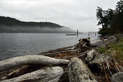Mortimer Spit Park (South Pender Island, BC)  -  (Published by GETTY IMAGES)