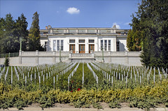 Le mémorial des victimes du Spiegelgrund (Hôpital Am Steinhof, Vienne)