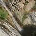 Falls Canyon, lower waterfall plunge pool