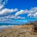 Vew along the beach near Fontanelle, Ugento