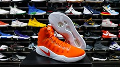 "Nike Hyperdunk 2016 / 14 us • <a style=""font-size:0.8em;"" href=""http://www.flickr.com/photos/40658134@N04/49665527233/"" target=""_blank"">View on Flickr</a>"