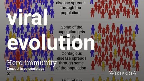 Viral evolution against herd immunity