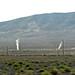 Fumaroles (Brady's Hot Springs, Nevada, USA) 4