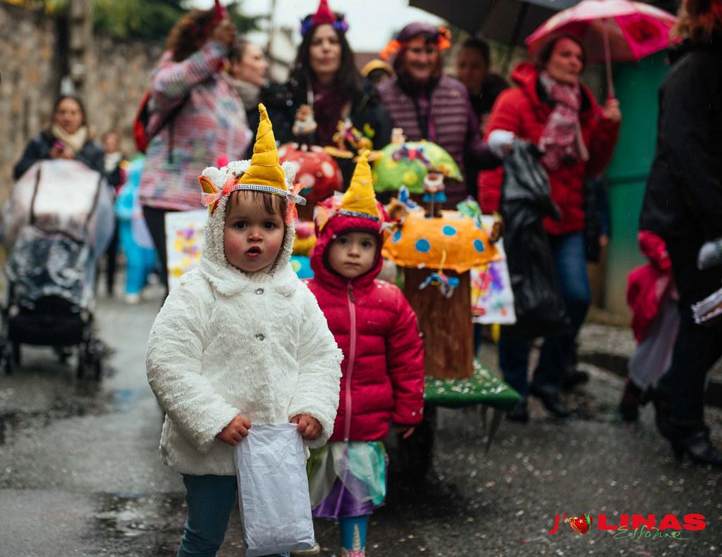Linas_Carnaval_Bineau_2018 (63)