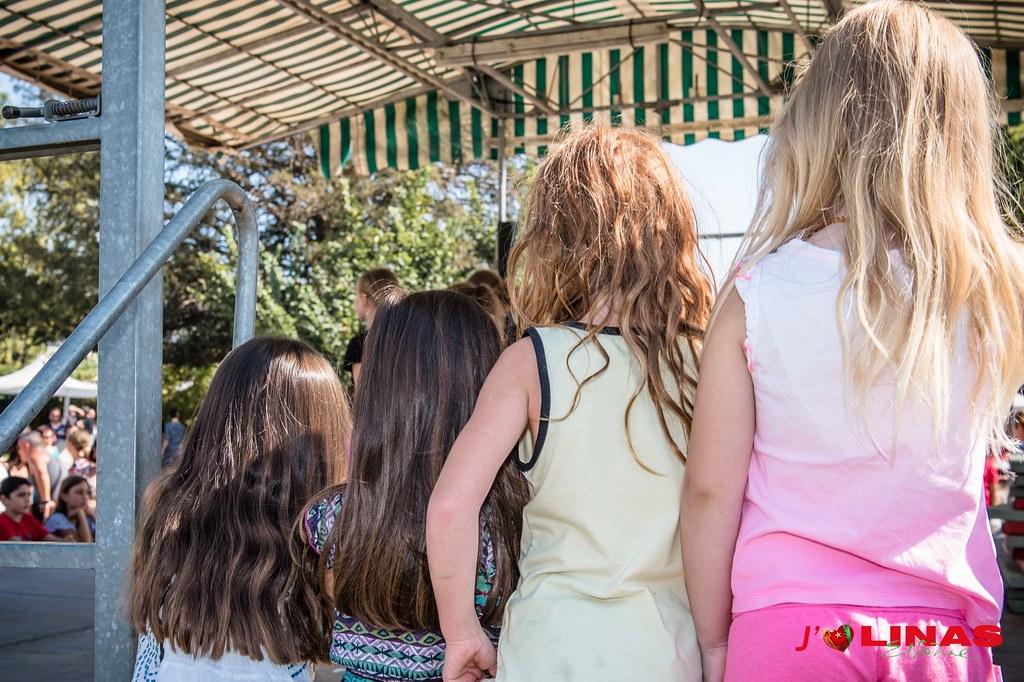 Fête_des_Associations_LINAS_2018 (80)
