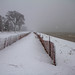Snow on Neshotah