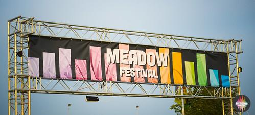 2014Meadow0011