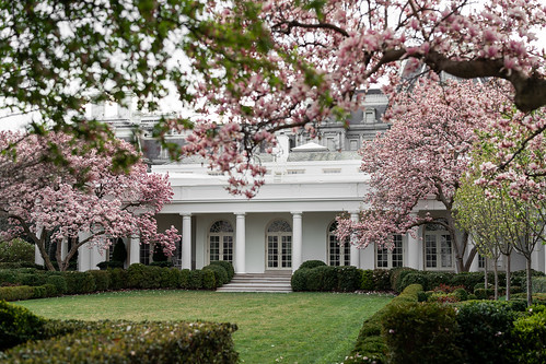Rose Garden of the White House by The White House, on Flickr