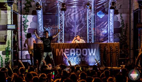 Meadow_2016_Festival_0846
