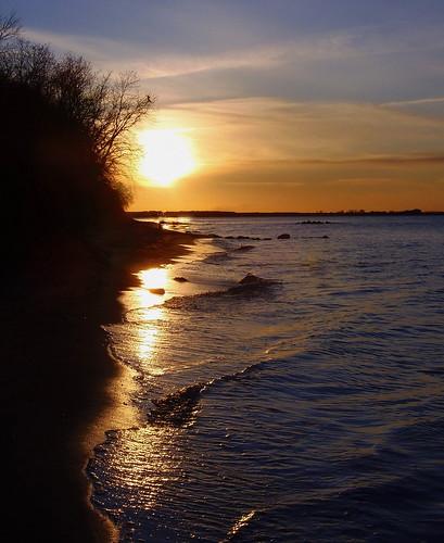 Golden March Sunset