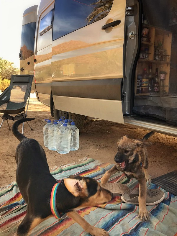 Camping in Tafraout, Morocco, Africa.