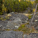 A way to the top of the rocks at east end of Frame Lake , Yellowknife, Great Slave Lake, NWT