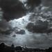 #9865 Paris Storm