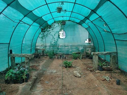 Mist Chamber - IARD, Coimbatore