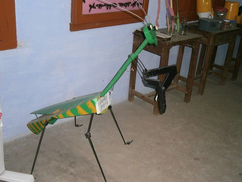 Insect Model at Agricultural Entomology Laboratory - IARD, Coimbatore