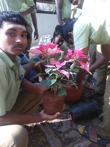 Potting and Repotting of Ornamental Plants - IARD, Coimbatore