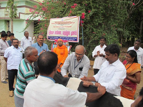Free Veterinary Medical Camp - IARD, Coimbatore