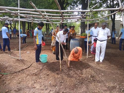 Nutritional Garden at FDMSE Campus