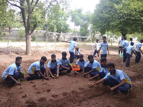 Skill Training on Transplanting of Vegetable Crops - IARD, Coimbatore