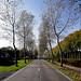 Damse Vaart-Zuid, Belgium