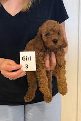 Katie Girl 3 3-21