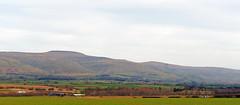 Photo of Cross Fell and the East Fellside under a milky sky.