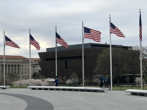 Flags and view to National Museum of American History and Culture, Washington, D.C.
