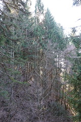 Trail from Montmin to Refuge du Pré Vérel