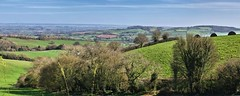 Countryside around Bradninch