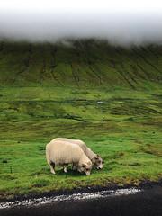 Faroe Islands, Streymoy.