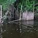 Fishtrap at water's edge; Amazonas, Brazil