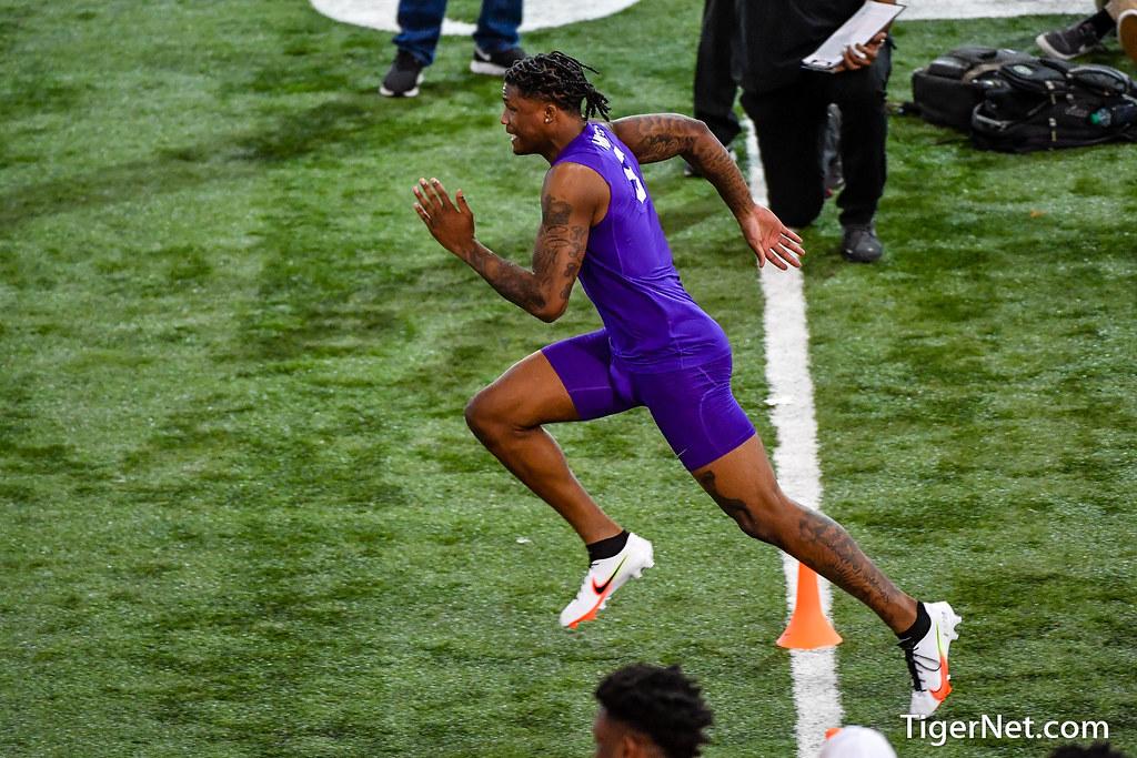 Clemson Photos: Tee  Higgins, 2020, Football
