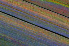 "Castelluccio prima del terremoto <a style=""margin-left:10px; font-size:0.8em;"" href=""http://www.flickr.com/photos/28350447@N06/49695045917/"" target=""_blank"">@flickr</a>"
