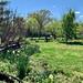 Along the Garden Fence