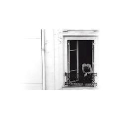 diary #2570: Young Parisians (2011)