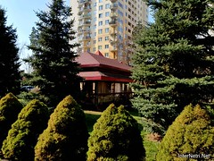 ЖК Чайки біля Київа 7  Ukraine  InterNetri