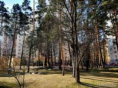 ЖК Чайки біля Київа 4  Ukraine  InterNetri